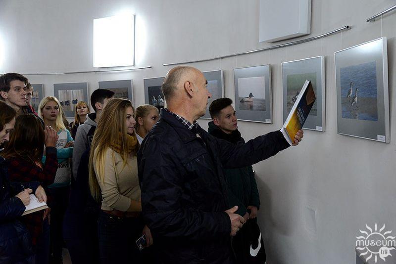 Выставка «Утиные истории». Природно-экологический музей, Полоцк, 2016